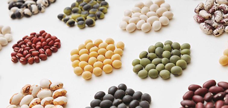 """今日は節分!巻いた""""豆""""の栄養を調べてみた。"""